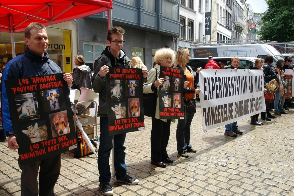 With the ADC (Anti Vivisection Coalition)  in Belgium earlier today.