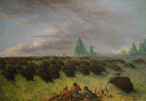 George Catlin (American, 1796–1872), A Prairie Picnic Disturbed by a Rushing Herd of Buffalo, 1854  Joslyn Art Museum