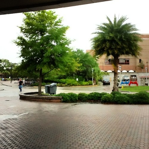 Wet and rainy afternoon #ucf #rain #orlando (Taken with instagram)
