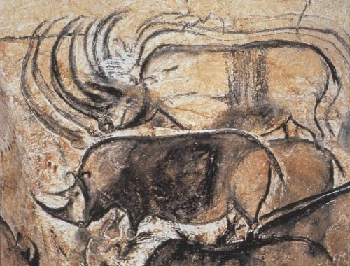 Rhinoceroses from Chauvet Cave, c. 30,000 BCE (via cavetocanvas)