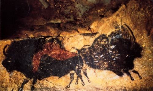 cavetocanvas:  Crossed bison in the nave at Lascaux, c. 15,000 BCE