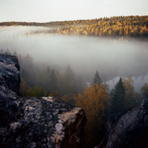 thenakedbrowneye:  Sunrise in Karelia (by finsky)