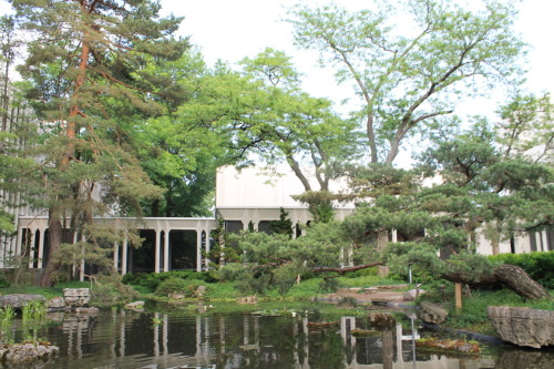 jai-gagne:  Japanese garden at Oberlin, Ohio