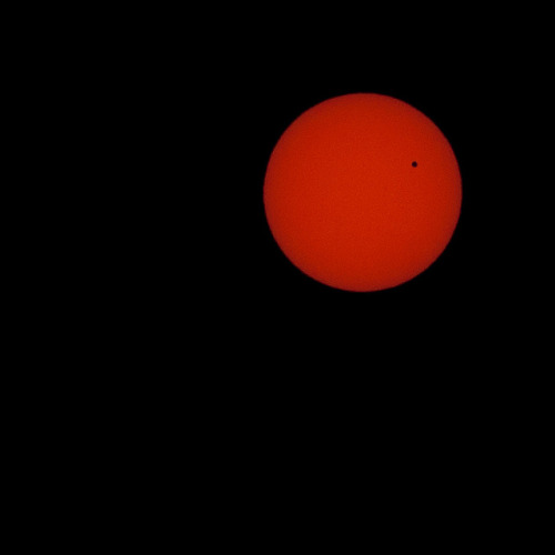 venus transit on Flickr. Via Flickr: taken from earth. lol  sony alpha a700+ opteka R72 filter + tamron 70-200 handheld baby. handheld.  Exposure1/3000 sec Aperturef/11.0 Focal Length150 mm ISO Speed100 facebook .prints .twitter