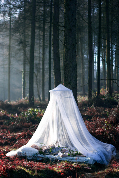 "fairytalemood:  ""In a fairytale"" by Francesca Jane Allen"