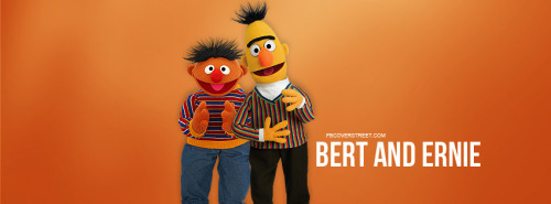 Bert Facebook Covers