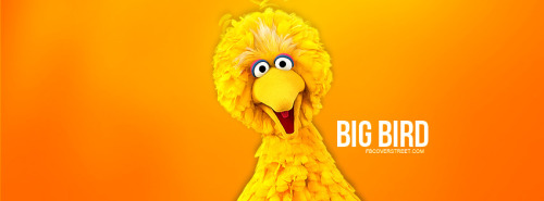 Big Bird Sesame Street Facebook Cover