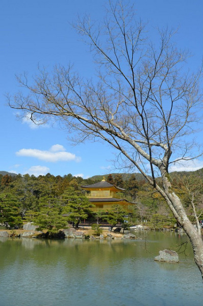 Kinkakuji on Flickr. 金閣寺