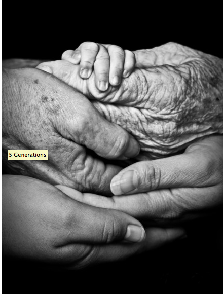 A picture is worth a thousand words 5 Generations by Maree Turner (New Zealand)