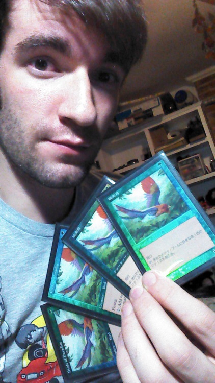 submission from gogogadgettumblr:   My favorite cards I own have got to be my 4 Foil 7th Edition Birds of Paradise.  Two are Japanese.  I'm pretty sure I'll never find another pair of Japanese ones to even out my playset, but I kind of like it this way.  It's quirky.  Send in your game face!
