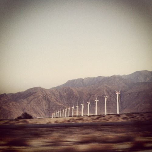 @minchew65  (Taken with Instagram at Windmills)