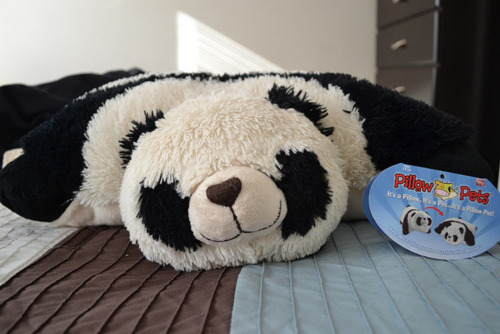 ish-brandon:  I need to replace my pillow pets ASAP. |: