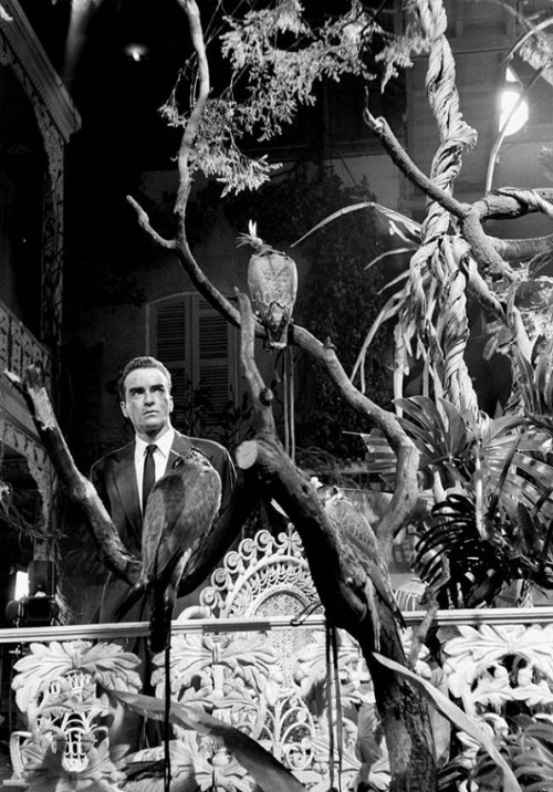 Montgomery Clift on the set of Suddenly, Last Summer (1959, dir. Joseph L. Mankiewicz) (via) Photographer: Burt Glinn