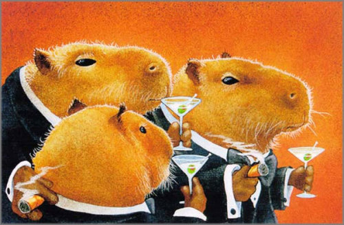 archiemcphee:  The Capybara Club by Will Bullas, who clearly recognizes the inherent dapperness of these awesome animals. (available as a print here)