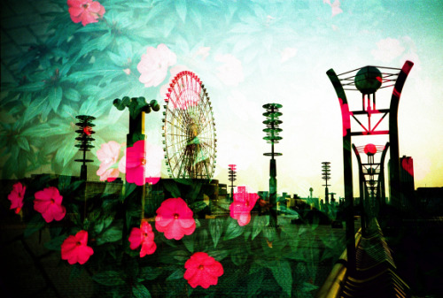 Lomography Film of the Day - Kodak EBX