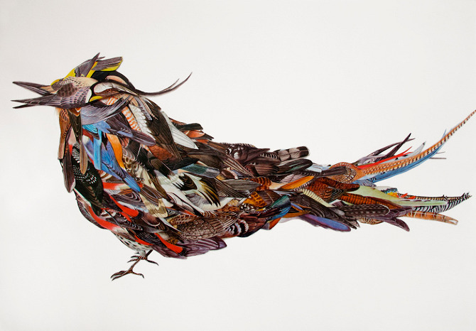 Larissa Haily Aguado. LatinoAmerica. Bird of Birds, 2011. Manual collage from found materials. Magazine print on 180 gsm white paper, 595 x 420 mm.  Via