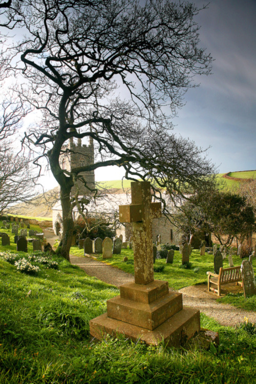 enchantedengland:     Church graveyard in Morwenstow, a little hamlet about 6 miles north of Bude in  Cornwall, England. Cornwall has THE BEST GRAVEYARDS EVER. I have no facts to base this upon, now. It is merely the opinion of someone who has looked at twelve million photographs of England and I am not exaggerating.    On a random note, it is morning and someone needs to make it stop. I am in dreadful pain here. I spent seven hours yesterday digging and weeding and planting and pulling and rooting around in the garden and now I am very very sorry. (image is by space monkey twister on flickr, there's a name for you)