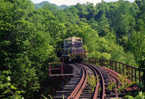 Rusty railway by threepinner on Flickr.