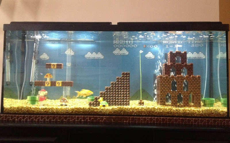 Super Mario Aquarium. ( build log and detail pics here: http://imgur.com/a/wuaMk )