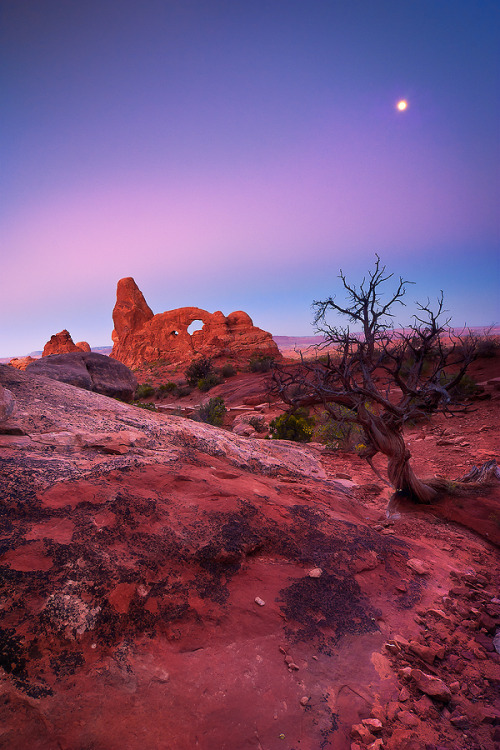 mer-de:  Moonset in Arches National Park, Utah