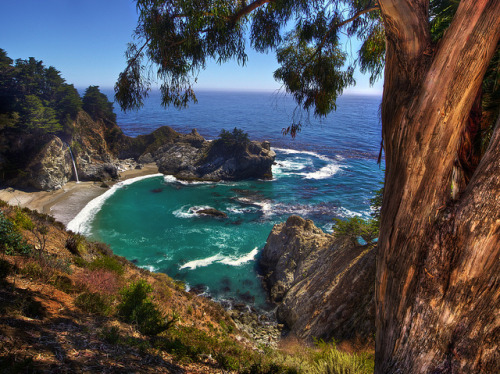 georgianadesign:  Secluded Big Sur cove with 80 ft. waterfall spilling onto the beach. McWay Falls, Julia Pfeiffer Burns State Park by Daniel Peckham.