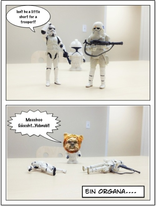 Don't mess with an Ewok