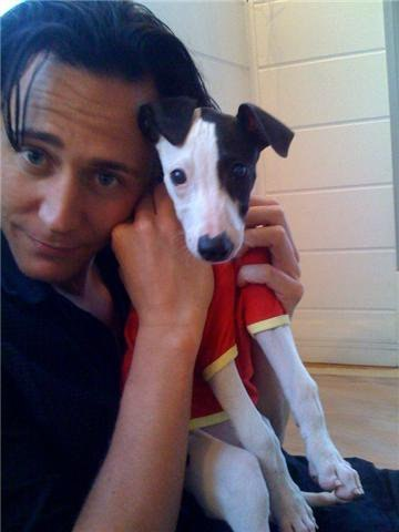 ilovehiddleston:  i love tom.i love dogs. LOOK AT HIS ADORIBLE FACE!!!