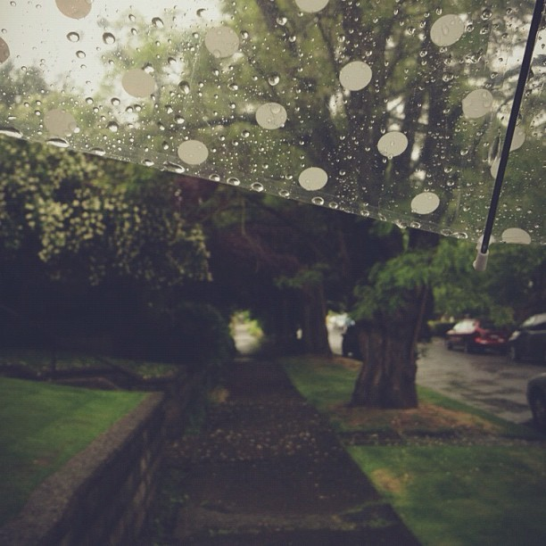 To the library in a sudden downpour. ☔💗 (Taken with Instagram)