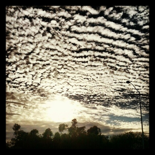 halder:  Brisbane morning, beautiful as ever. #clouds (Taken with Instagram)