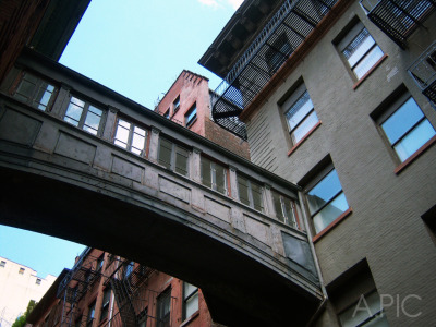 Staple Street / Tribeca