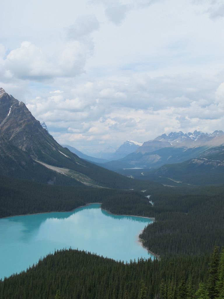 imprecise:  Peyto Lake (by allyhook)