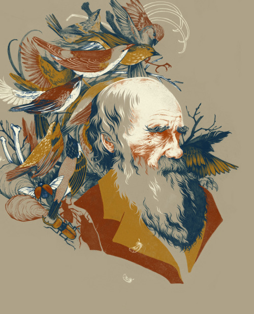 teaganwhite:  a portrait of Charles Darwin view project on behance | buy prints | visit my website