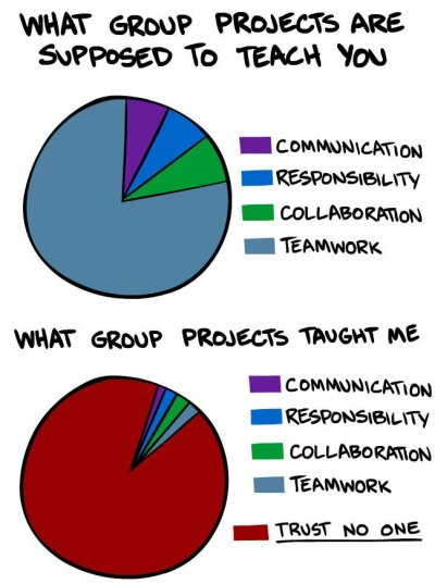 What I learned from group projects