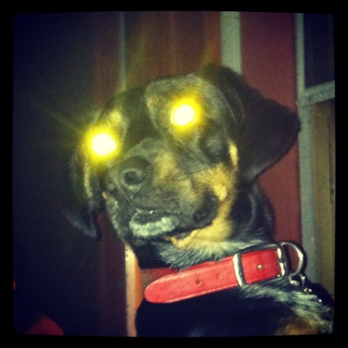 Thurman Thompson: Extraterrestrial  (Taken with Instagram)