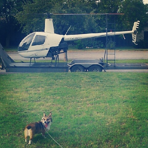 corgiaddict:  Pants and a helicopter.