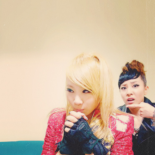 1/25 pictures of chaera