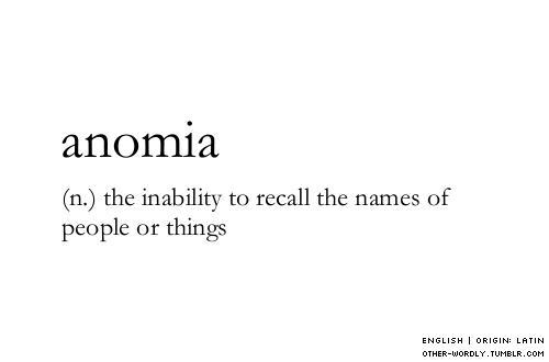 other-wordly:  pronunciation |  \a-nOm-E-a\ (click link for pronunciation guide)