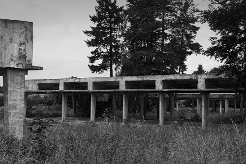 eastberliner:  Abandoned concrete structure in the forests outside of berlin .