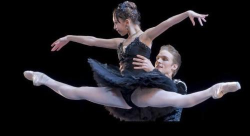Black Swan pas de deux, 3rd and final round .   ALYS SHEE