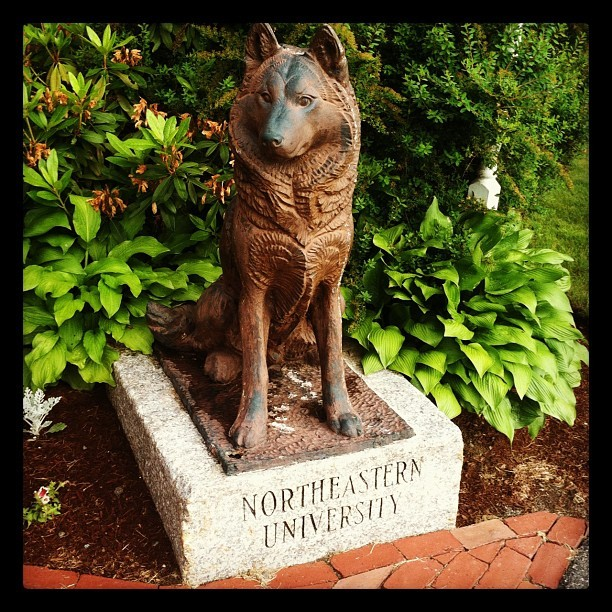 #Northeastern Pride - Go Huskies! (Taken with Instagram at The Warren Conference Center & Inn)