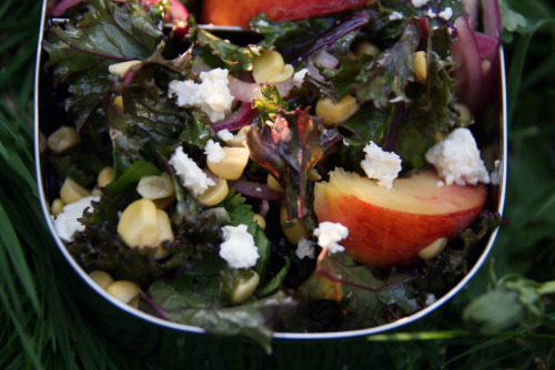 npr:  Photo Credit:Deena Prichep for NPRKale, Peach, Corn and Feta Salad While lettuce-based salads turn sadder and soggier the longer they sit in dressing, the sturdier leaves of kale just get nicer. This particular combination, inspired by a salad served at Brooklyn's Diner, matches kale with juicy peaches, briny feta and corn shaved right off the cob. Makes 6 servings 1/4 cup olive oil Juice of 1 lime 2 tablespoons sherry vinegar Dollop honey Salt and pepper to taste 1/2 small red onion, sliced into thin half-moons 1 bunch kale (red Russian is especially nice), washed and torn into small pieces 1/2 bunch cilantro, washed and coarsely chopped 2 ears corn, cut off the cob 3 peaches, cut into slim wedges 1/4 cup feta (preferably a moist, mild feta, like French or Israeli), crumbled In a large bowl, whisk together the olive oil, lime juice, sherry vinegar and honey. Season with salt and pepper to taste. Add the onion, and let sit for a few minutes to mellow. Add the kale and cilantro, and mix well to coat with the dressing. I like to sandwich two aluminum bowls together and shake, shake, shake until it's coated. Let sit for an hour, refrigerated or at room temperature, for the kale to absorb the dressing and soften. Scatter the corn, peaches and feta over the top and serve (or pack in containers for your picnic).