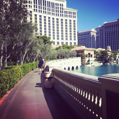 A mile run around the Bellagio fountains. A hangover won't stop me!!