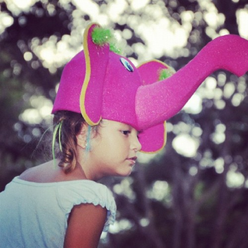#kid #zoo #hat #cute #elephant #pink #park (Publicado com Instagram, no Zoológico)