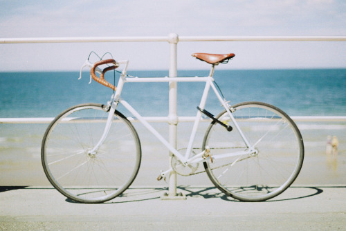 deadsimba:  Seaside Cycling (by Tabsinthe)