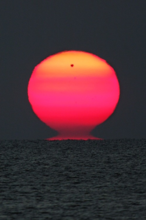naturereblog:  When Venus Rises with the Sun Image Credit & Copyright: Emil Ivanov Explanation: This dramatic telephoto view across the Black Sea on June 6 finds Venus rising with the Sun, the planet in silhouette against a ruddy and ragged solar disk. Of course, the reddened light is due to scattering in planet Earth's atmosphere and the rare transit of Venus didn't influence the strangely shaped and distorted Sun. In fact, seeing the Sun in the shape of an Etruscan Vase is relatively common, especially compared to Venus transits. At sunset and sunrise, the effects of atmospheric refraction enhanced by long, low, sight lines and strong atmospheric temperature gradients produce the visual distortions and mirages. That situation is often favored by a sea horizon. (via Astronomy Picture of the Day)
