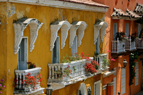 zarzor:  Colonial balconies by flower_bee on Flickr.  Cartagena, Colombia