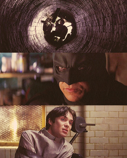 "Top 50 Movies (of all time) 24. Batman Begins  → ""Would you like to see my mask? I use it in my experiments. Probably not very frightening to a guy like you, but these crazies, they can't stand it…They scream and they cry, much as you're doing now."""