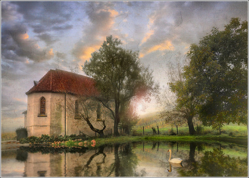 the pond by Jean-Michel Priaux on Flickr.