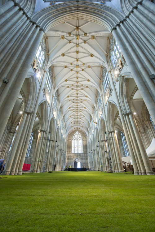 York Minster Cathedral fitted with a carpet of grass by Wow!Grass! Wow!Grass! has transformed York Minster's 14th century nave in preparation for the York Minster Rose Dinner. More than 900 guests will attend the dinner, being held to celebrate the Queen's Diamond Jubilee and to raise money for the York Minster Fund. Guests will walk and dine on a carpet of grass inside the Minster. Watch the BBC news coverage above. Watch the video →