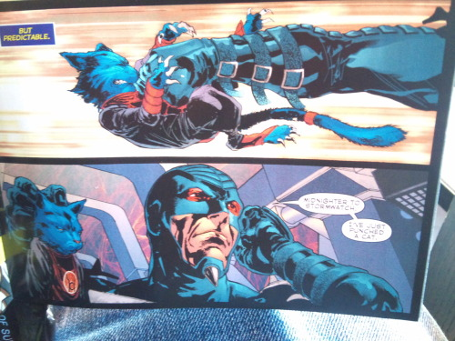 """Midnighter to Stormwatch. I've just punched a cat.""  Hahahaa, poor Dex Starr"